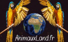 AnimauxLand